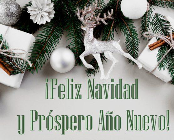 Feliz Navidad y Próspero Año Nuevo 2021!