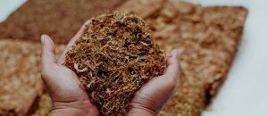 Tabaco dónde es más abundante